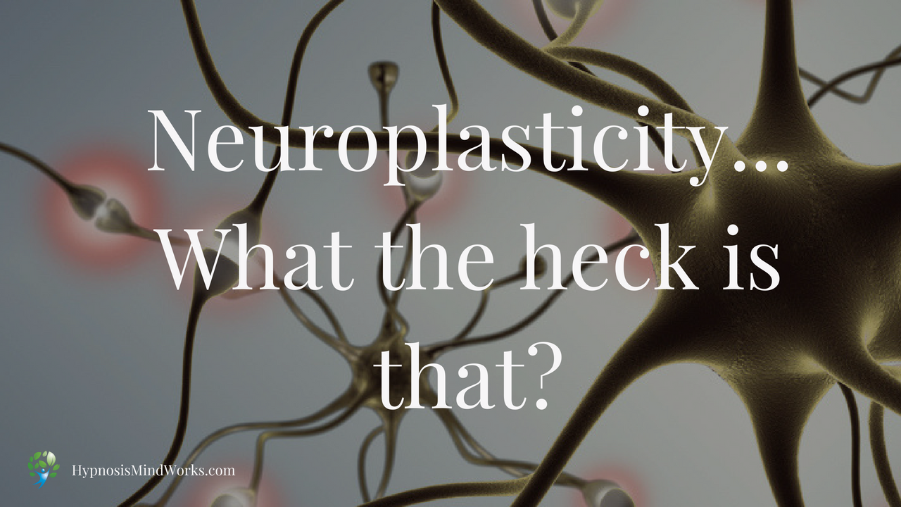 Neuroplasticity – What the heck is that?